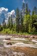 Wild river in Tatras mountains in summer, Slovakia