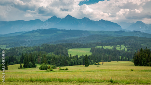 Green meadow and Tatra mountains in summer, Poland - 248305830