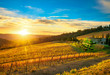 Leinwanddruck Bild - Radda in Chianti vineyard and panorama at sunset. Tuscany, Italy