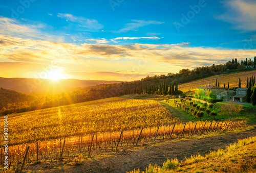 Leinwanddruck Bild Radda in Chianti vineyard and panorama at sunset. Tuscany, Italy