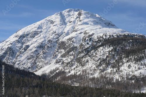 Piz Rosatsch, aus Sicht Pontresina, Graubünden, Schweiz