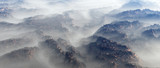 Aerial of mountain landscape with fir trees in mist. - 248333290