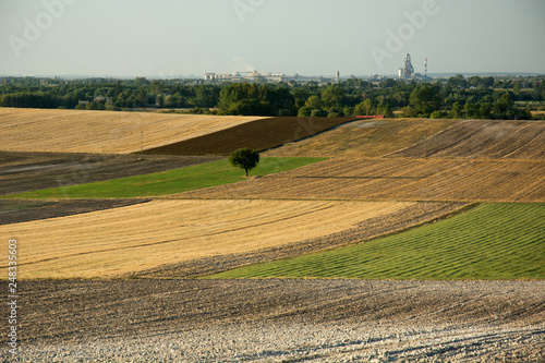 Foto Murales Lonely tree on colorful fields, factory on the horizon and sky