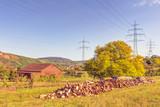 Landwirtschaftlicher Betrieb, Holzstapel auf einer Streuobstwiese
