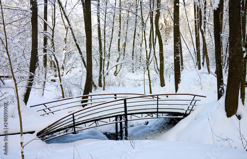 Forest small river, wooden pedestrian bridge, winter forest in the snow, frosty day.