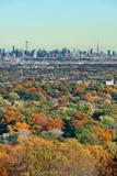 New York City skyline viewed from park