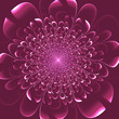Beautiful pink flower on purple background. Artwork for creative design, art and entertainment. - 248415274