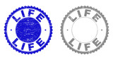 Grunge LIFE stamps isolated on a white background. Rosette seals with grunge texture in blue and gray colors. Vector rubber stamp imprint of LIFE title inside round rosette. - 248424627
