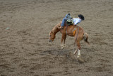 Rodeo Riding in Wyoming