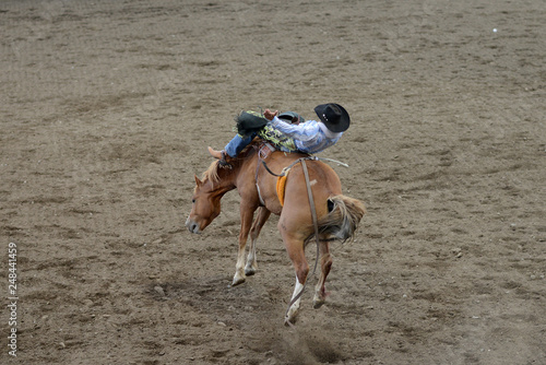 Rodeo Rider in Cody, Wyoming