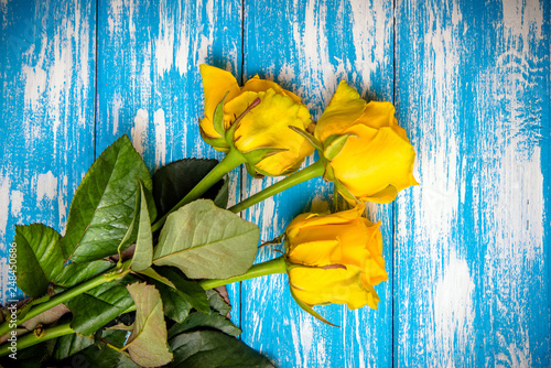 Foto Murales A bouquet of yellow roses lies on a bluewooden background