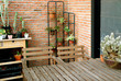 Relaxing space surrounded by the succulent plants at the backyard