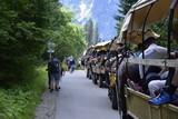 Fototapeta Horses - Tatrzański Park Narodowy, zaprzegi konne w Tatrach © spacetech
