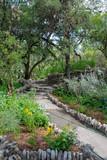 Japanese Tea garden walking path through flowers