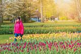 Keukenhof Gardens, flowers and tulips. Netherlands - 248484615