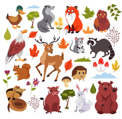 Wild forest animals characters set with plans, mushroom and tree. Graphic design for children book. Vector flat isolated cartoon illustration