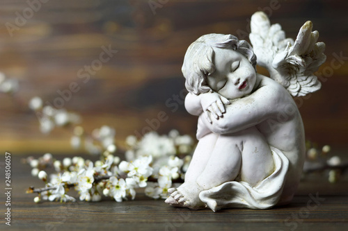 Cherub angel and spring branches - 248506057