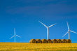 Wind mills behind golden field after harvest