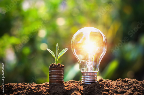 Leinwandbild Motiv light bulb on soil with young plant growing on money stack. saving finance and energy concept