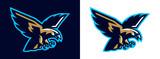 Logo eagle, hawk. Flying eagle. Mascot, bird, falcon, bald, flying, animal, freedom, wing, wildlife. Vector illustration - 248572800