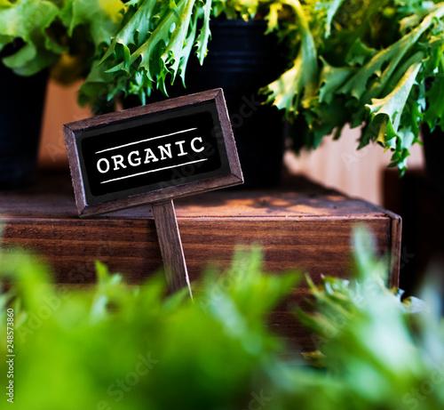 Fresh Natural Organic Product Concept © Rawpixel.com