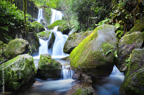 waterfall in florest  - 248591676