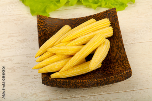 Leinwanddruck Bild Young baby corn