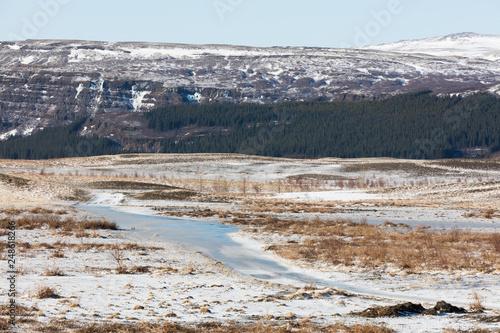 Foto Murales Eislandschaft mit Wald und Berg in Island