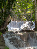Dunns river falls flowing in forest