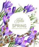 Crocus flowers Vector watercolor. Spring season delicate frame. Template design card for wedding, birthday, mother days