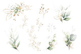 watercolor arrangements with leaves, herbs.  herbal illustration. Botanic composition for wedding, greeting card. - 248629804