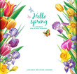 Template for cards from arrangement with multicolor tulips flowers