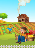 A farmer harvest vegetable - 248635275