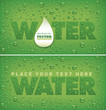 many fresh water drops on natural green background - 248649479