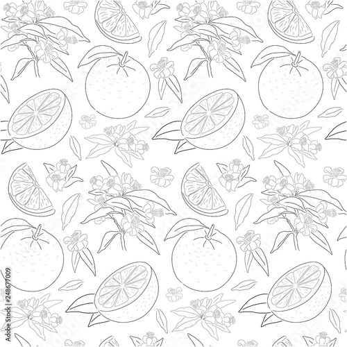 seamless orange pattern © Alena