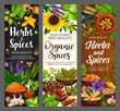 Spices, culinary herbs, cooking herbal seasonings