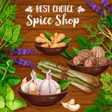 Culinary spice herbs, cooking herbal seasonings - 248702218
