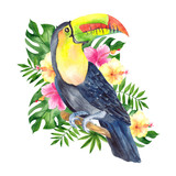 Watercolor illustration with parrot and tropical leaves