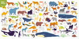 Big vector set of different world wild animals, mammals, fish, reptiles and birds. Rare animals. Funny flat characters, good for banners, prints, patterns, infographics, children book illustration etc