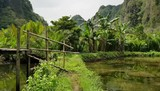 Moving towards a wooden bridge on the bank with a view of hills and banana trees in Rammang-Rammang, Makassar, Indonesia