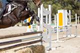 close up of a beautiful horse jumping the hurdles - 248762888