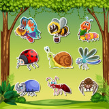 insect sticker pack set