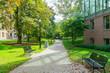 Walking in The University of Tornoto