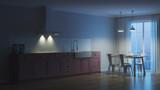 Night. Evening lighting. 3D rendering. - 248802878