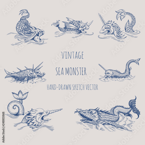 Mythological vintage sea monster. Fragment of old pirate map. Hand drawn vector sketch. © Shalyapina