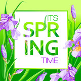 Its spring time background with Irises flowers. Spring placard, poster, flyer, banner invitation card.