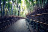 Fototapeta Bambus - Arashiyama Bamboo Forest in Kyoto Japan © manjik