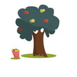 Red and yellow apples on the tree. Vector apple tree, isolated on a white background. - 248819227