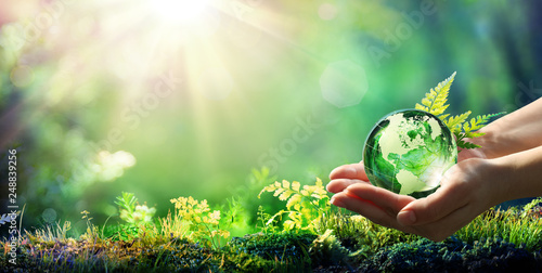 Leinwanddruck Bild Hands Holding Globe Glass In Green Forest - Environment Concept
