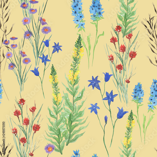 Watercolor painting seamless pattern with beautiful wildflowers, leaves, branches. Meadow illustrastion - 248875010